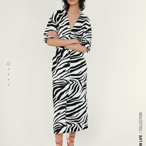 Zara NWTs animal print dress